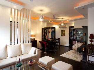 Designer Serviced Apartment for Rent-Central Delhi