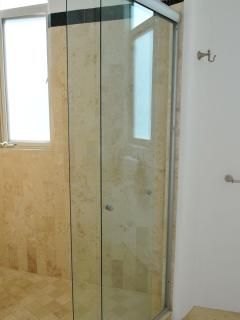 Master Bathroom Shower Cabin