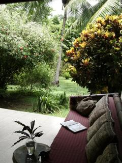 Relax in the hammock and listen to the sounds of nature: ocean waves, monkeys, birds, the stream...