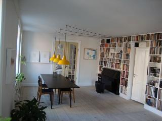 Large Copenhagen apartment w/roof terrace near Tivoli