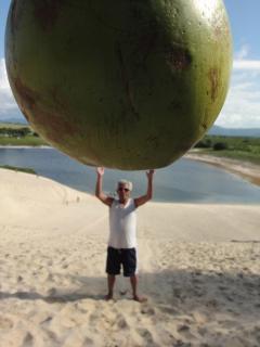 Giant coconut
