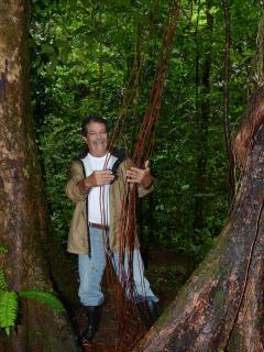 Let me take you on a Trail Hike..the next 10 pics of Primary Rainforest, Manicured Trails, Waterfall