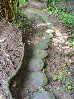 Easy access trails ~~ for explorers of all ages