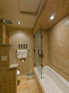 tub area in master ensuite