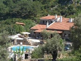 Villa Tas Evi, Kayaköy