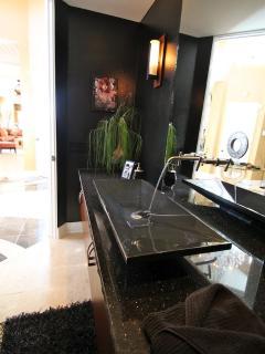 Luxurious master bathroom with jacuzzi tub