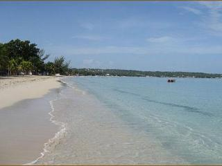 A/C 1 BR Garden Studio Apt. w/ kit. Steps to Beach, Negril