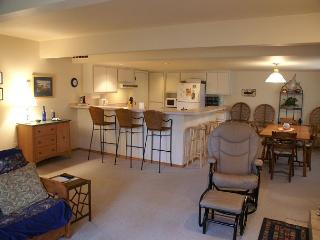 Lower unit great room with futon and WiFi, Dining area seats 6 and up to 6 more at bar