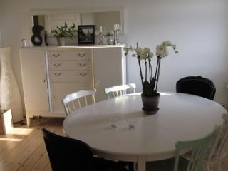 Beautiful Copenhagen apartment near the city centre