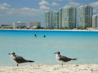 OCEAN DREAM HOTEL 1 BEDROOM OCEANVIEW CONDO CANCUN, Cancún