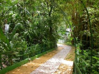 Jungle bridge to the villa from the main road