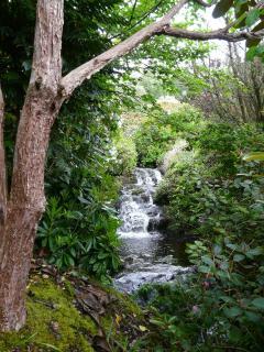 The stream in the garden