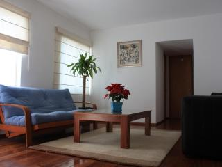 Spacious park-front apartment 20min away to center, Mexiko-Stadt
