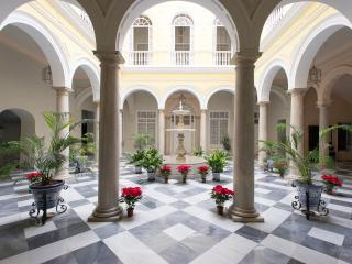 PALACE XIX CENTURY .LOVELY APARTMENT NEAR CATHEDR, Seville
