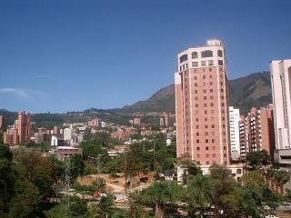 View from kitchen terrace (Dan Carlton Hotel)