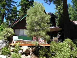 Frog Cabin $175/nt $1050/wk includes 1 FREE night stay 1500 sq ft Hot Tub, Incline Village