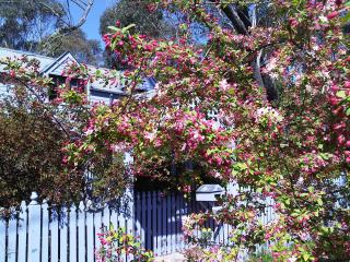 Lavender Manor - Beaches and Mountains Girls Getaways Venue, Blackheath