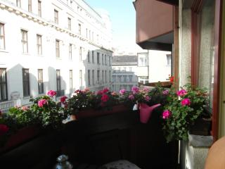 Budapest, Aranykéz 6th Street, in the heart of the city!Free Wifi!