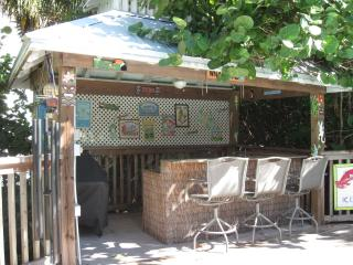 Tiki Bar with Gas Grill
