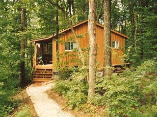 Castaway Cabin Vacation Cabin Hocking Hills Ohio, Logan