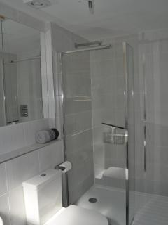 Walk in Rainfall Shower