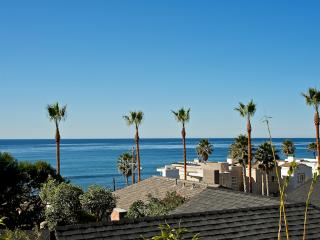 #249 - LUXURIOUS BEACHVIEW Retreat W/Terrace!, La Jolla