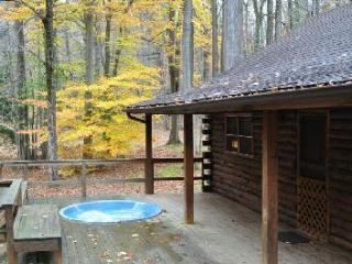 RIVERFRONT! HOT TUB!  Log Cabin.Private.Fully staffed. Pet friendly. TOP RATED !