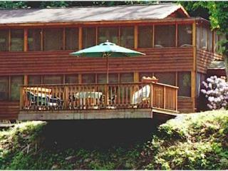 Cheat River Lodge WATERFRONT private entrance & bath. Pet friendly. HOT TUB!, Elkins