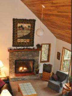 Open stone fireplace with gas logs.