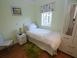 single with hidden guest bed to make up as a twin or double bedroom