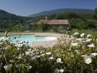 Rentals with pool, holiday apartments at Assisi