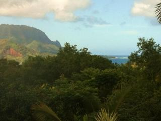 Mountain and Hanalei Bay View