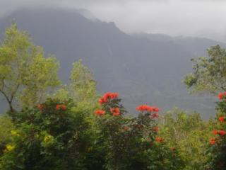Mountain view from lanai - misty day and waterfalls!