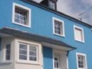 Child & pet friendly holiday home with indoor pool, Redange