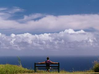 Serene, Expansive Ocean Views, Lovely Hawaii Home, Honokaa