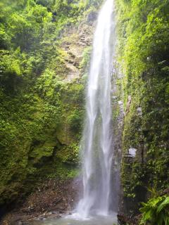 Second of 5 large falls in Gated community