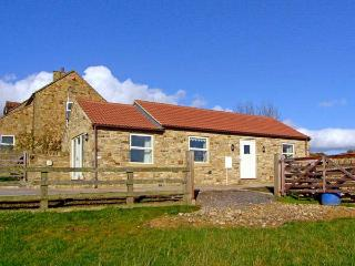 SOUTH BYRE, family friendly, country holiday cottage, with a garden in, Hamsterley