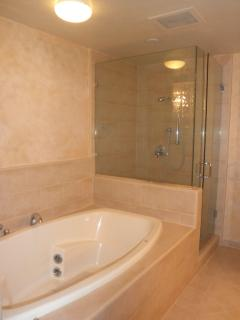 Master Bathroom with Walk In Shower and Oversized Tub