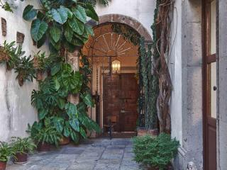 Front door, arched foyer entrance, wrought-iron gate orchid- and fern-lined walkway to central patio