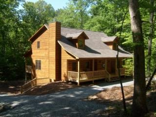 Huge 6 Bed Room Cabin on a Large Lot with Hot Tub, Game Room and Fire Pit