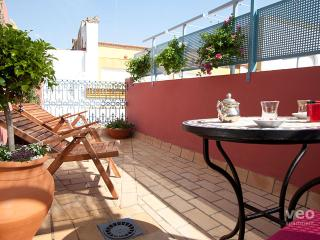 Magdalena Terrace. 2 bedrooms, private terrace, Sevilha