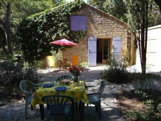 La Nouvelle Peyriere - Pool - Superb Property, Mazan
