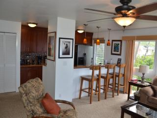 From the lanai looking into the living area.