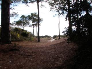 Private path to the quiet beach