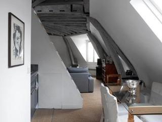 Bright loft style apt in Marais