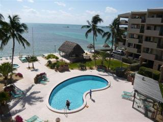 THE PALMS 408, Islamorada