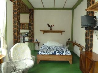 Nature Lover's studio apartment, Quepos