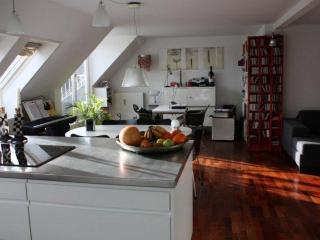 Luxury apartment close to Hellerup station, Copenhagen
