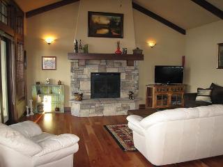 Living Area, propane fireplace