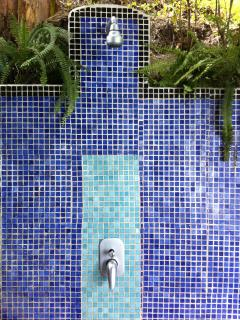 Outdoor shower for washing off the beach sand, with orchids
